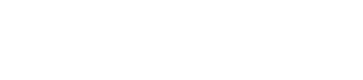 Best Day Out Cornwall logo