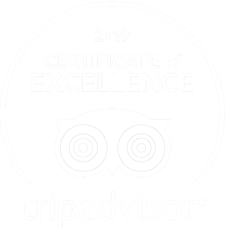 TripAdviser 2019 Certificate of Excellence logo